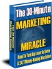 Thumbnail the 30 minute marketing miracle PLR